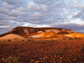 Kanku-Breakaways Conservation Park