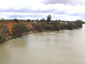 The view from Kingston-on-Murray Bridge.