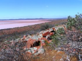 The large saline lake system surrounded by red sand hills in Lake Gairdner National Park