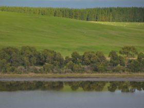 Lake Leake, Glencoe S.A.