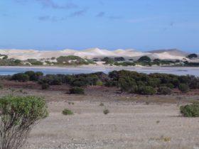 The natural saline lakes and surrounding coastal dunes of Lake Newland Conservation Park