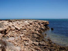 Laura Bay Conservation Park