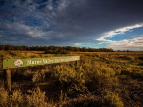 Marne Valley Conservation Park