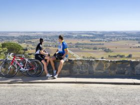 Mengler's Hill Lookout and Barossa Sculpture Park