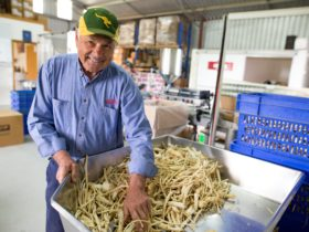 Brian Meakins, Owner of Newmans Horseradish
