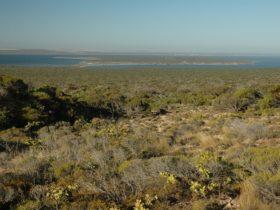 Venus Bay Conservation Park