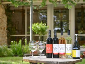 Vigna Bottin Cellar Door and Osteria