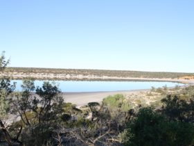 Goog's Lake after rain in Yumbarra Conservation Park