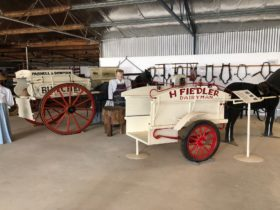 Bringing History to Life at The Farm Shed Heritage Museum, Kadina edit
