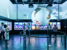 6 people in blue sea themed room with interactive walls and science on a sphere.