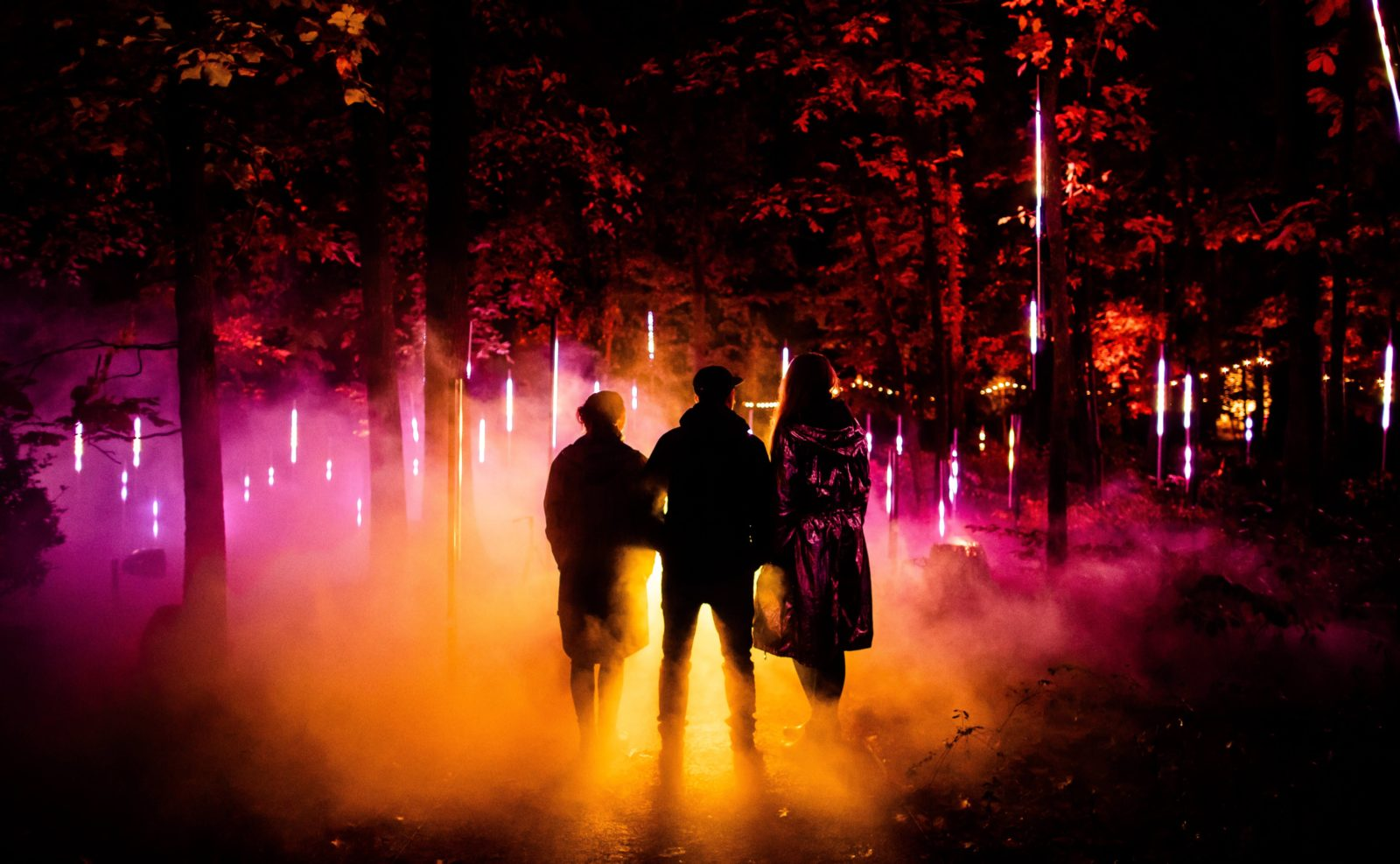Silhouettes of three people in a forest lit with pink and orange light