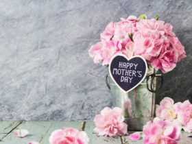 Promo photo of flowers and a sign