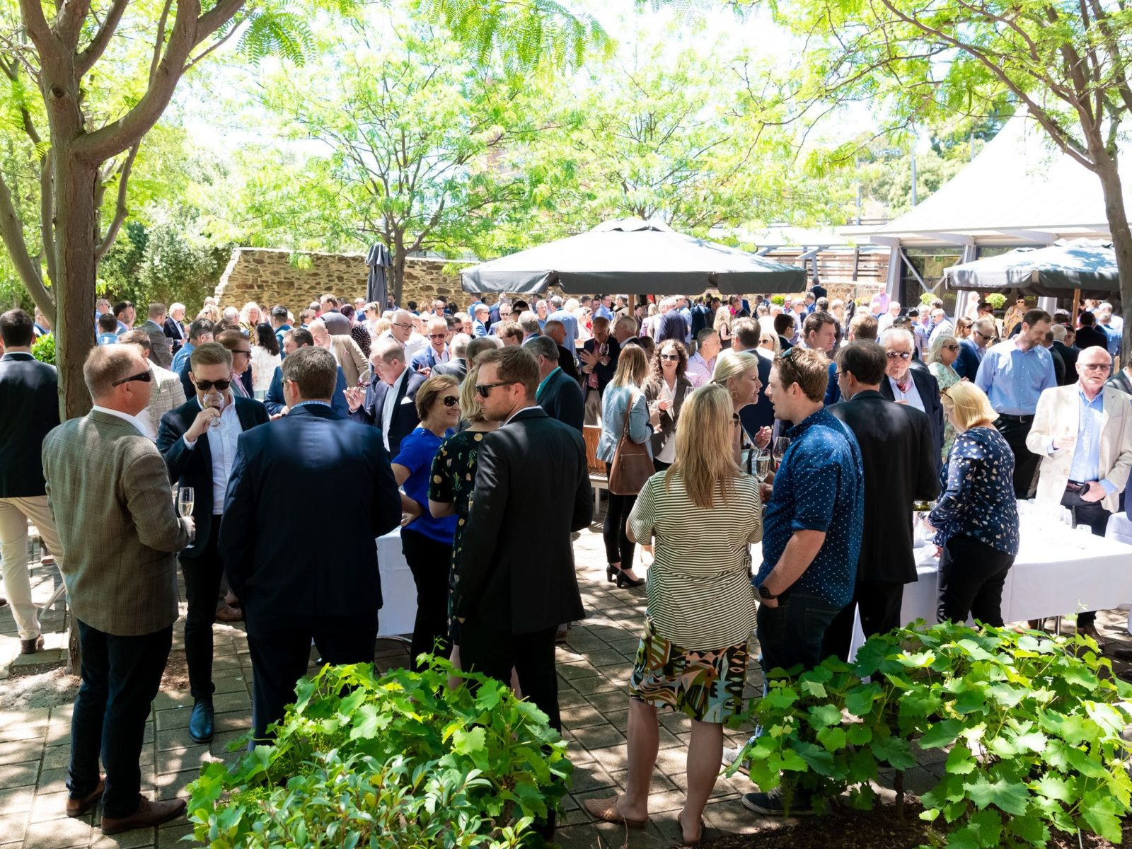 Variety Vintage Wine Auction Luncheon 2020