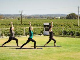 Yoga True North Yoga Barossa Wellness