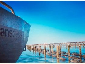 Streaky Bay Oyster Lease