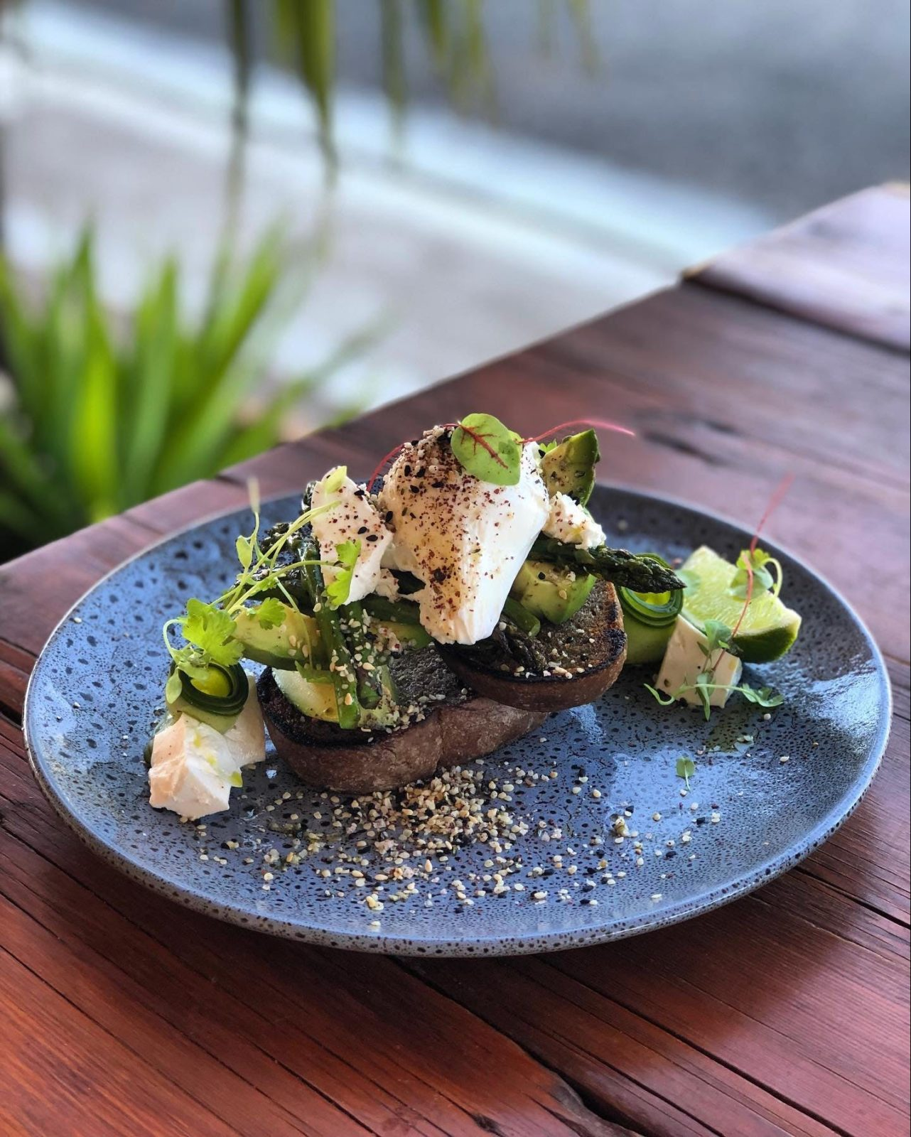 Pickled cucumber, feta, asparagus, avocado, poached eggs on house made rye