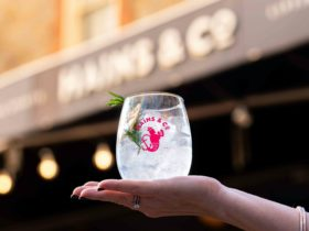 Gin lovers ahoy!
