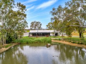 Jaeschkes Hill River Clare Estate Cellar Door