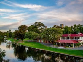 Perfectly positioned on the banks of the river Torrens