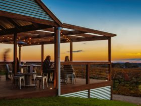 sunset views on the deck overlooking the vineyard