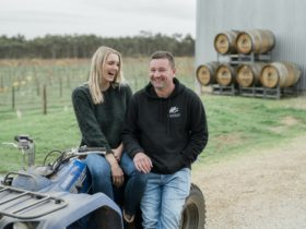 Enjoying life at the winery - Shanahans Wines