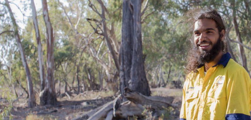 Canoe Tree