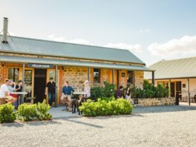 Eden Valley Riesling Month: Cellar Door and Vineyard experience at Brockenchack Wines