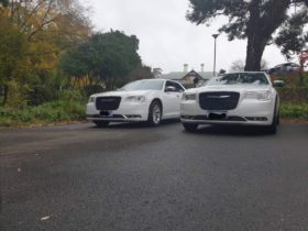 This photo is showing two white chryslers in the parking of Saltram wines in Angaston,Barossa Valley