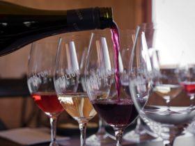 Kimbolton Wines seated wine tasting