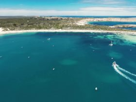 Marion Bay Ocean Safari Home Base, Pondalowie Bay