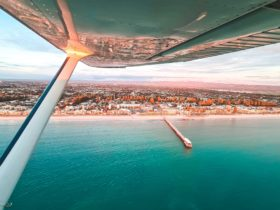 Henley Beach captured from one of our coastal scenic flights