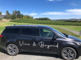 Vino & Beyond