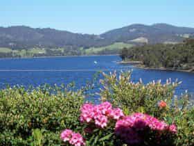 Waterviews From Donalea