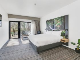 Guest accommodation room, with king bed and ample space, large window/glass door to small balcony.
