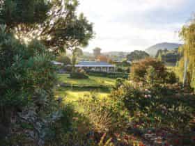 Garden with Studios nin background
