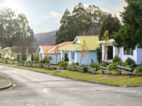 Tarraleah Estate's restored Art Deco Cottages