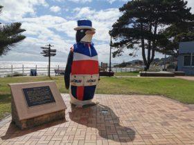 Big penguin's Australia Day costume