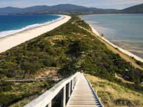 Bruny Island Neck
