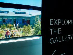 Explore the gallery