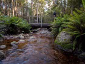 O'Neill's Creek