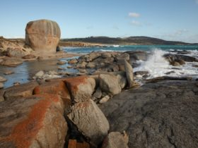 Lichen-stained boulders on Flinders Island coastline