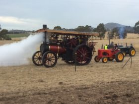 One of the Steam Traction Engines that will be working at the event