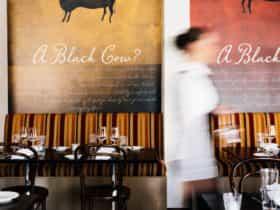 Black Cow Bistro Launceston Tasmania Restaurant