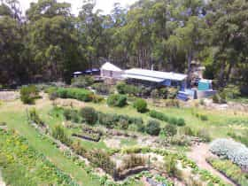 Aerial view of cafe