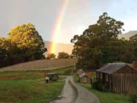 Rainbow at Hartzview Vineyard