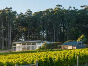 Moores Hill Winery & Cellar Door