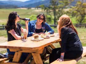 Enjoy lunch in the picturesque Pyengana Valley