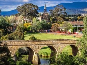 Bill Peach Journeys – Easter in Tasmania