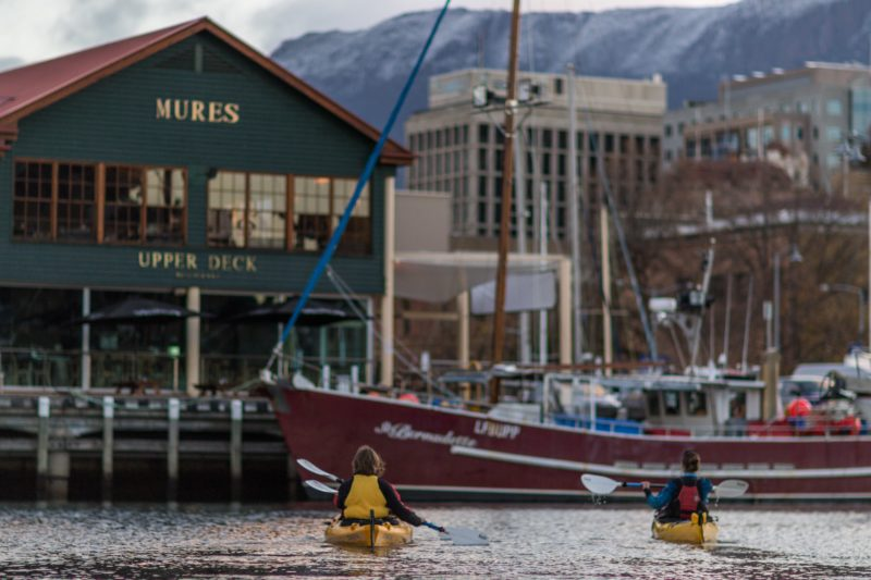 Kayakers paddling in Hobart Docks with fishing boats and Mt Wellington in the background