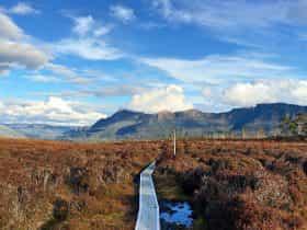 Tasmania's World Heritage Site - The Overland Track